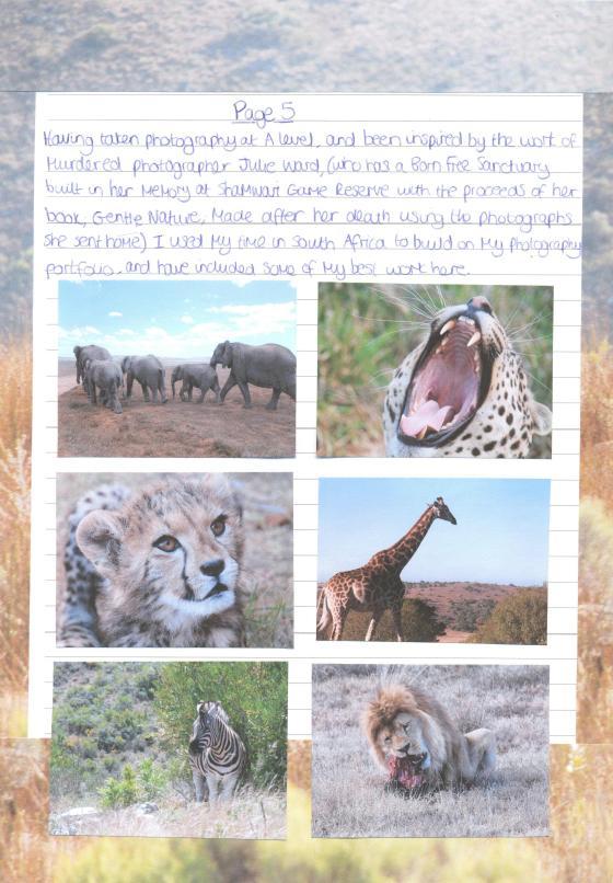 Shamwari Report page 5