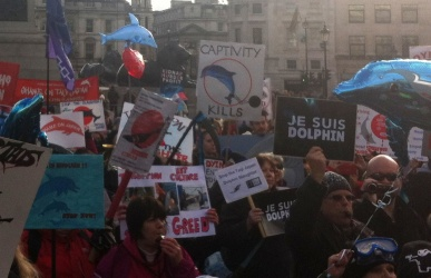 Animal rights activists at a dolphin march, London