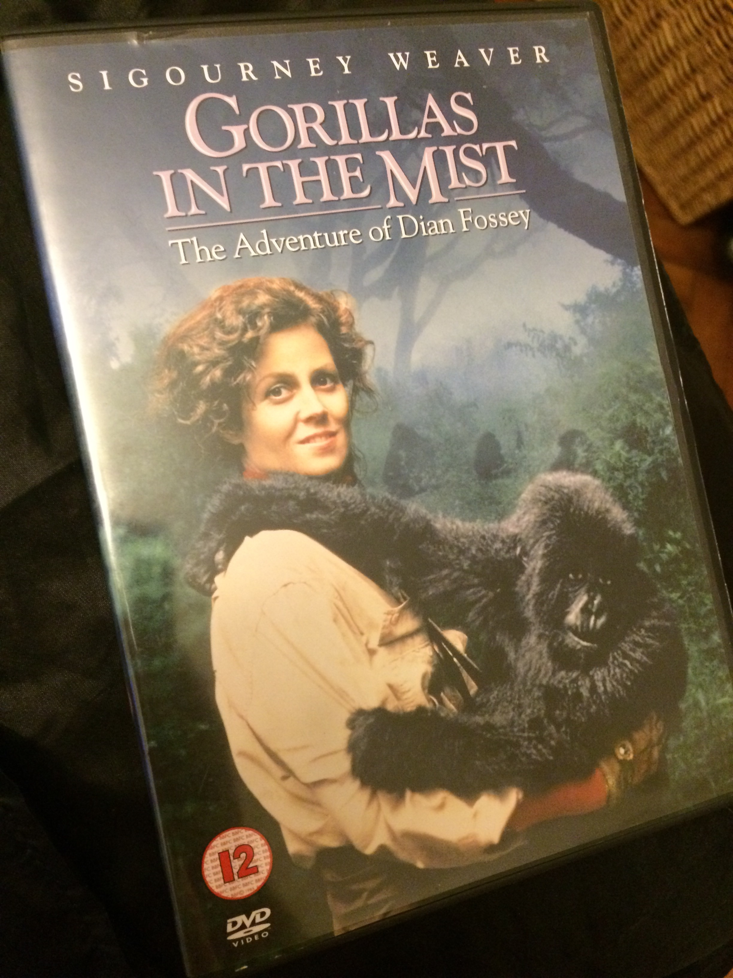 gorillas in the mist in critic essay Immediately download the gorillas in the mist summary, chapter-by-chapter analysis, book notes, essays, quotes, character descriptions, lesson plans, and more - everything you need for studying or teaching gorillas in the mist.