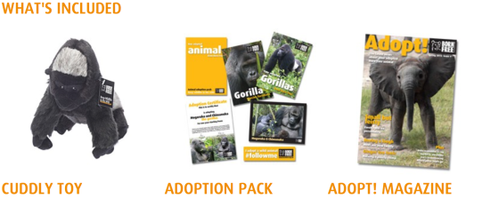 adoption pack