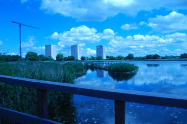 Photography Day Course — Woodberry-Wetlands