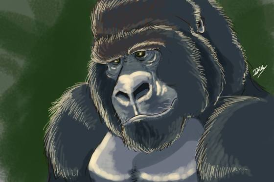 Harambe by Danielle Adams