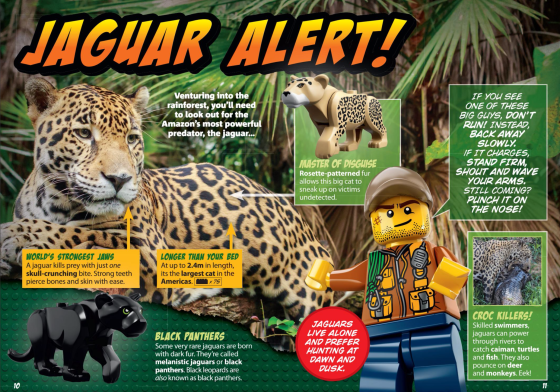 National geographic lego expedition jungle guide